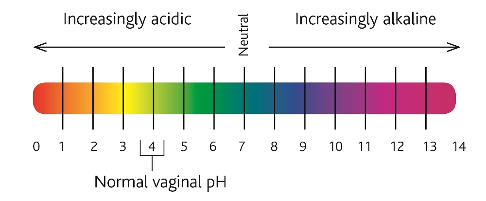 Elevated vaginal ph