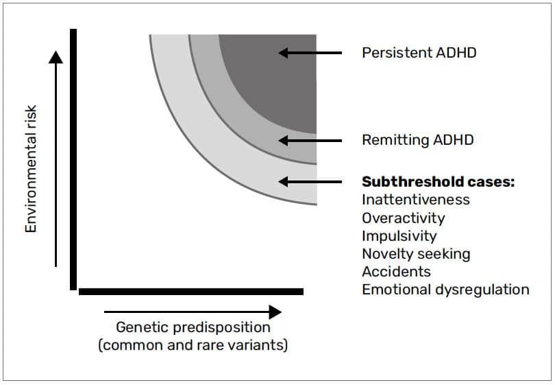 Discovery Of The First Genome Wide Significant Risk Loci For Attention >> What Causes Adhd